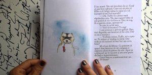 Jurnalul-unei-Pisici-Asasine